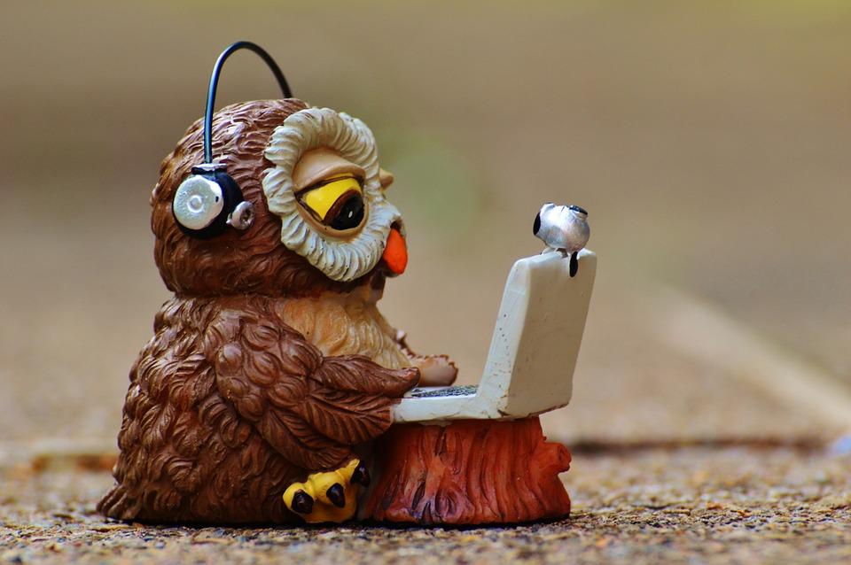 owl-947741_960_720.jpg